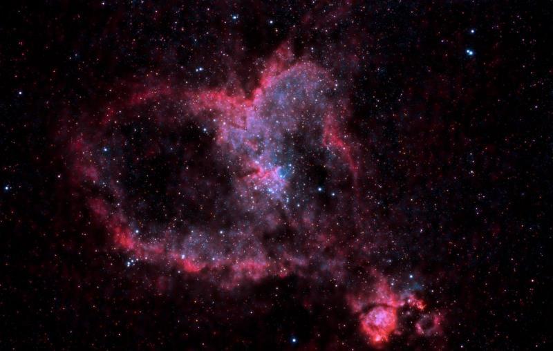 IC1805DNGimp3 (Large).jpg