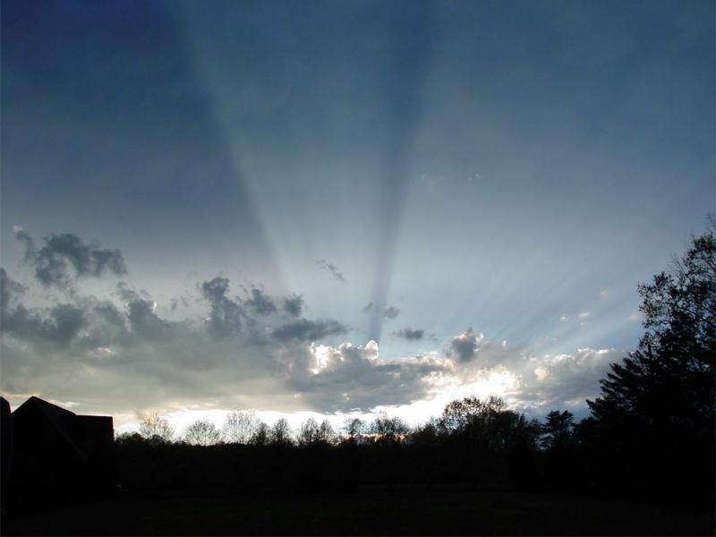 3-24-12 strong shadows and rays sml.JPG