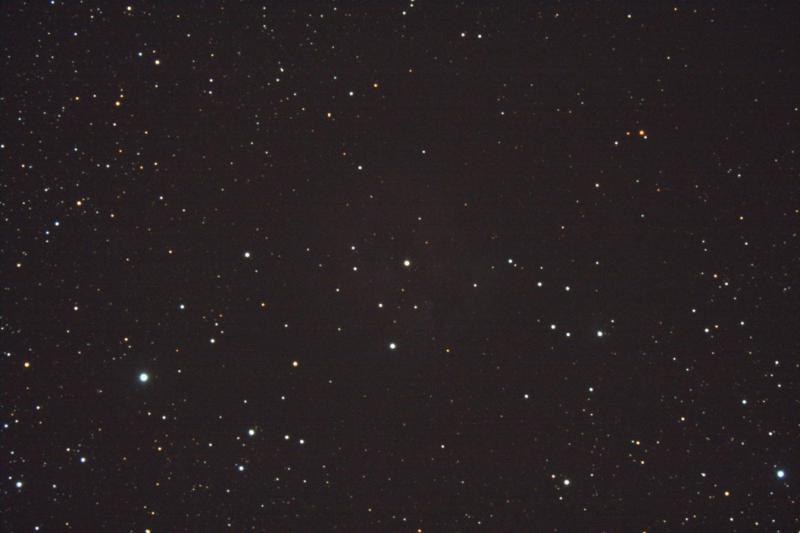 5481974-IC5146-005colorg36_2.jpg