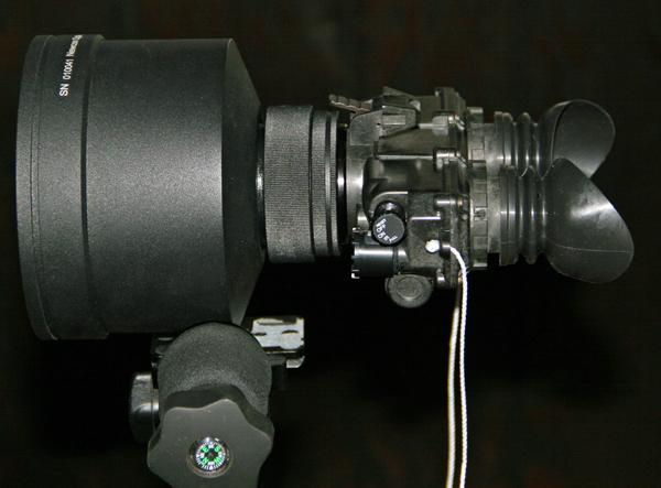 PVCat.jpg