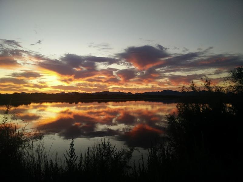 Palo Verde Sun Rise 1.jpg