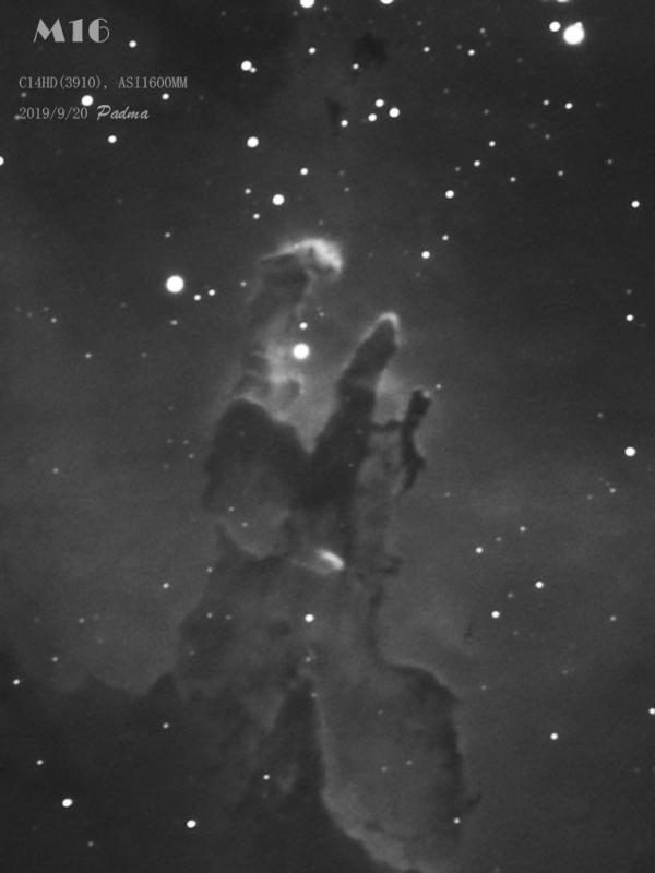 M16-2019.jpg