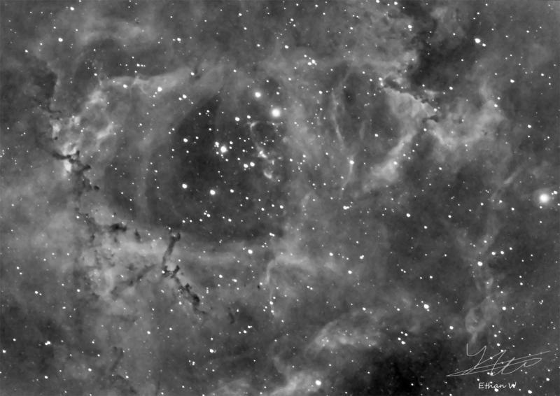 NGC 2244 in Ha.jpg