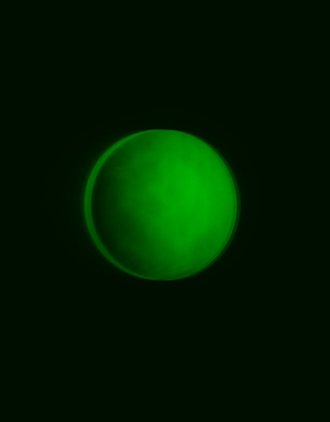 160ED Green Null Redo.jpg