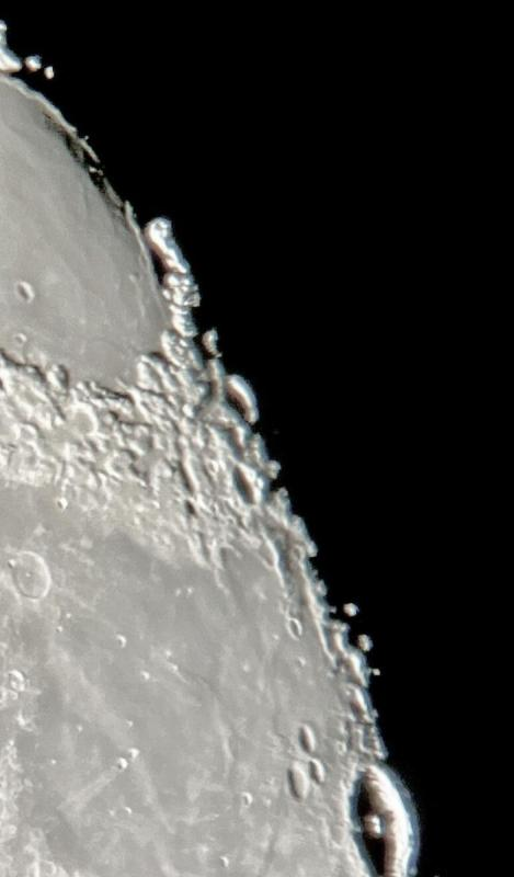 Moon Naylor Sunday AM IMG_8042 Processed Rotated Cropped CN.jpg