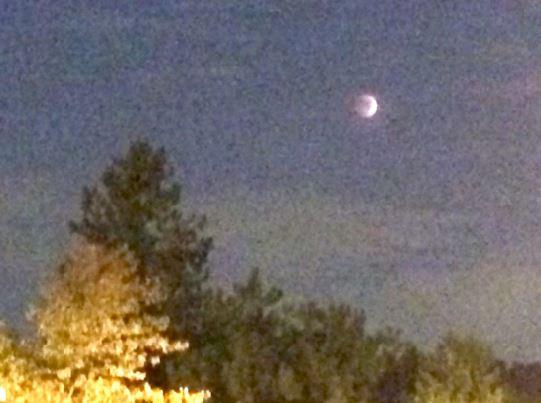IMG_0494 10-8-14 Lunar Eclipse sml.JPG