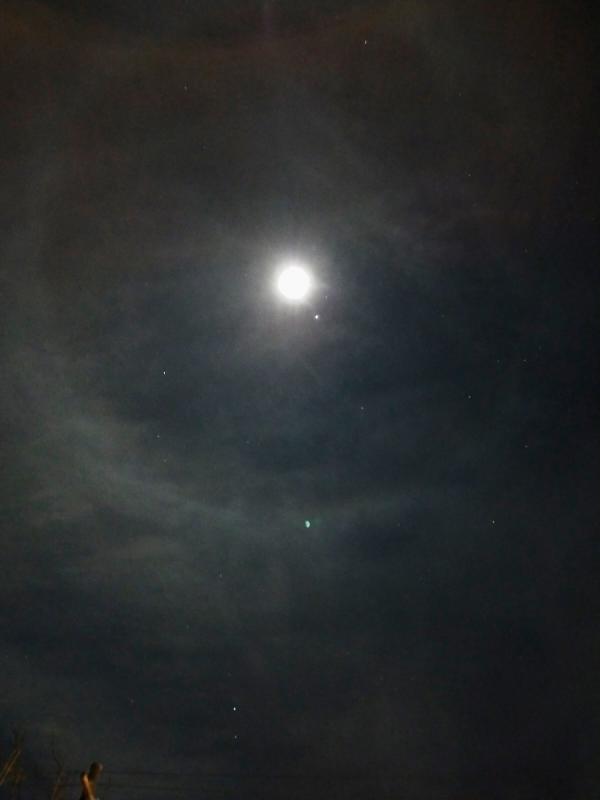 Lunar halo 15 Oct 2021-1 - Copy.jpg