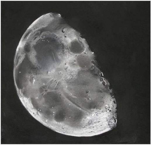 2742593-moon for CN.jpg