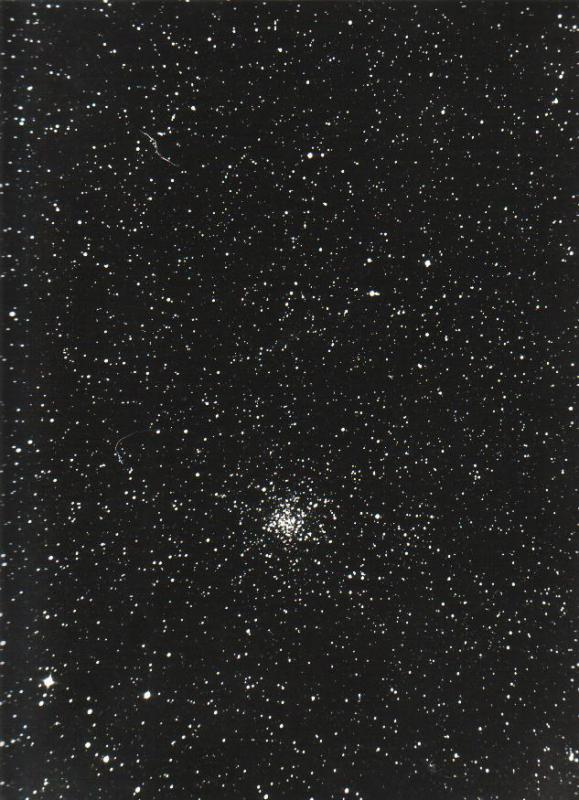 4895054-M11~1.JPG