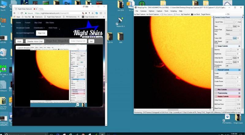 sun7 (Large).JPG