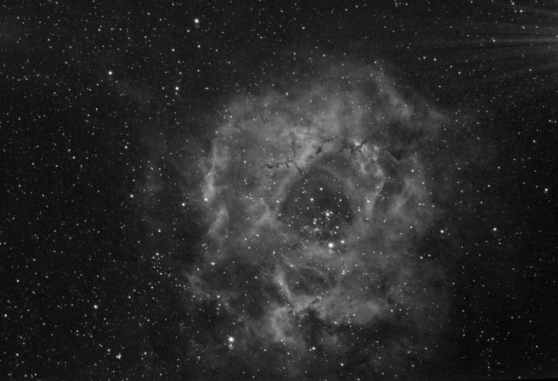 NGC2238-BIN1-HA_3000s (Medium).jpg