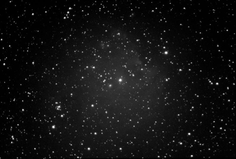 NGC2174 Affenkopf Olif4.2ASI178_44frames_352s_res.jpg