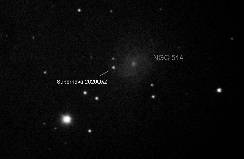 NGC514wSupernova 2020UXZ C8f6.3ASI178_100frames_800s_cropres.jpg