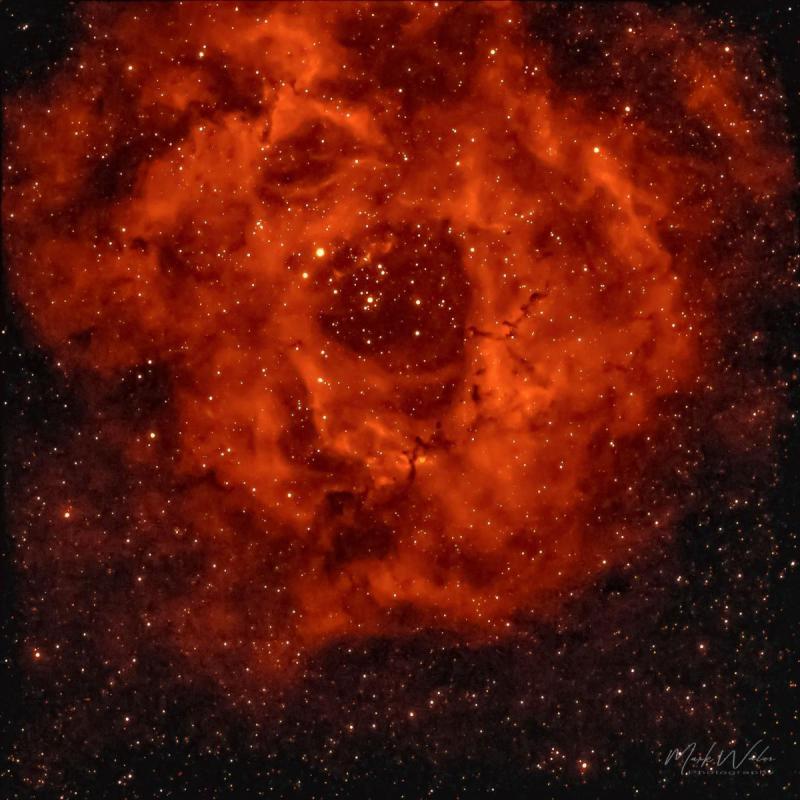 Rosette Nebula 2.JPG