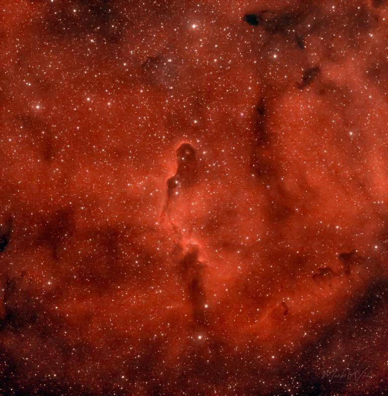 Elephant Trunk Nebula_.JPG