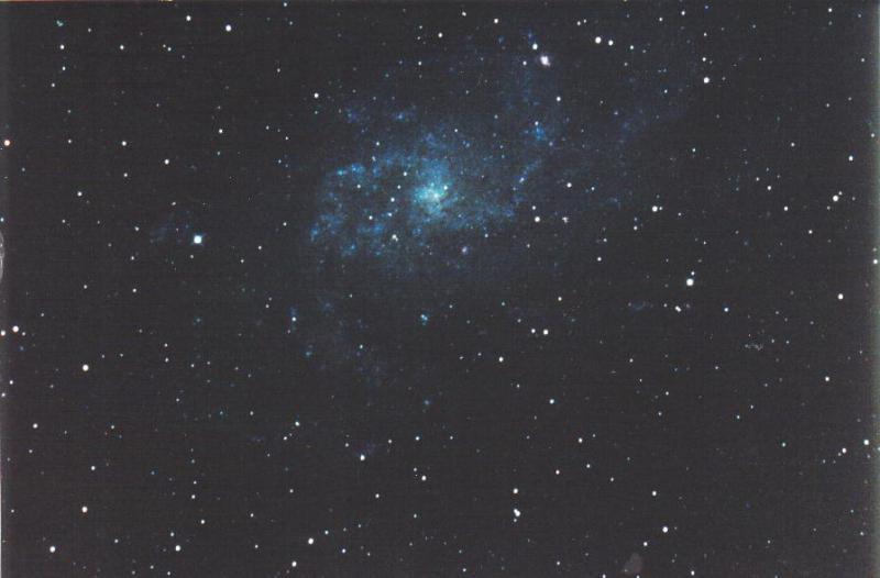 4961309-m 33,1987.jpg