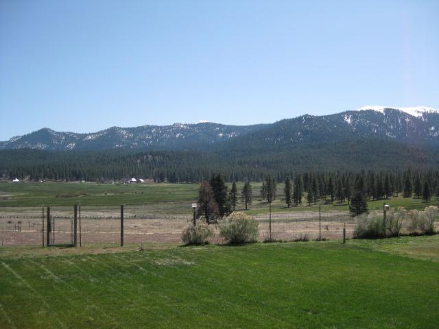 4965031-south view.JPG
