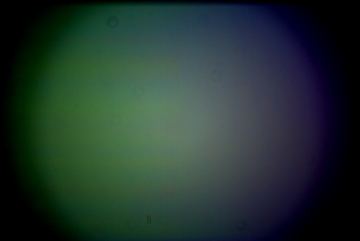 daylightflat.jpg