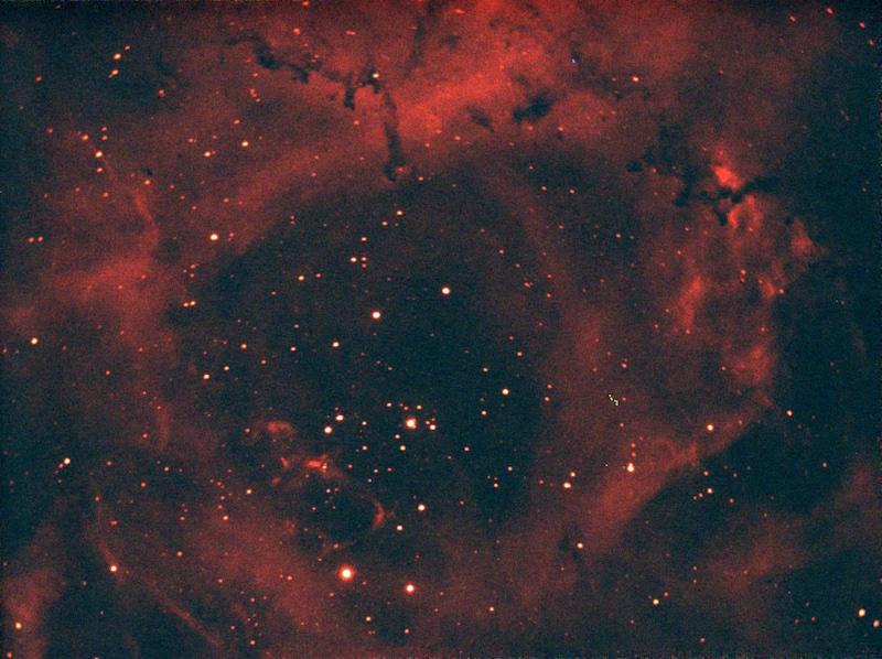 Rosette2 HA 7x45.jpg