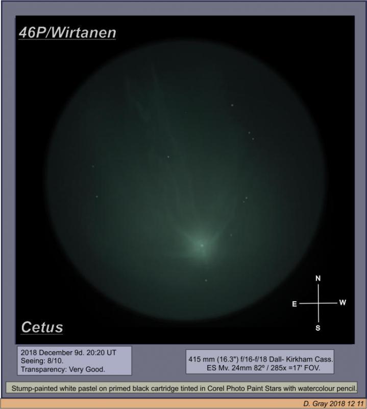 46P Wirtp2.jpg