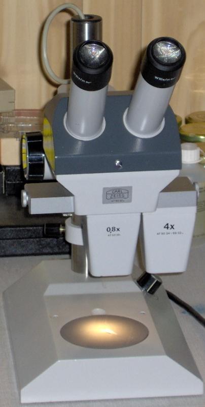HPIM0234-01-2.jpg