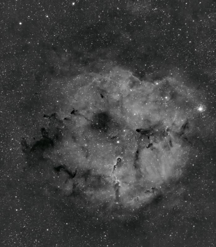 IC1396 -WEB.jpg