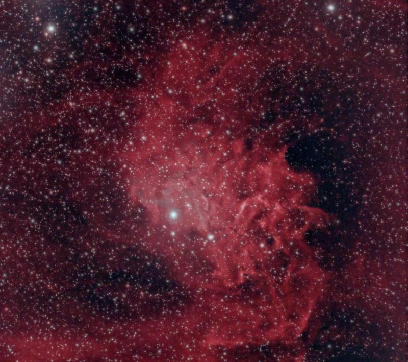flaming star nebula.JPG