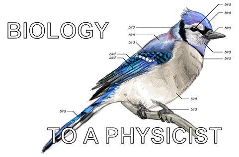 bio-phys.JPG