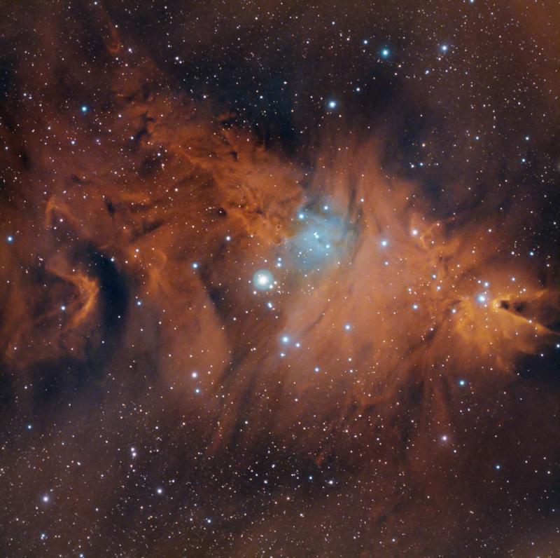NGC2264_360mPIPSw.jpg