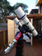 Trying to locate Gary Jarette - Kiss focuser for QSI camera - last post by PRejto